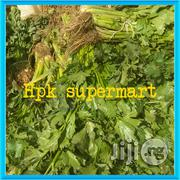 Wholesale Fresh Celery Vegetables | Meals & Drinks for sale in Plateau State, Jos