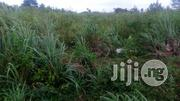 104 Acres Of Land At Moniya,Along Ijaye/Iseyin Road With Deed Of Assig | Land & Plots For Sale for sale in Oyo State, Akinyele