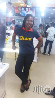 Field Sales Agent   Sales & Telemarketing CVs for sale in Lagos State, Agege
