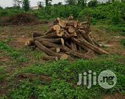 3 Plots of Land | Land & Plots For Sale for sale in Oyo State, Afijio