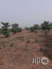 21 Hectares Of Cashew Farm With Cofo At Ilorin | Commercial Property For Sale for sale in Kwara State, Moro