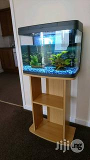 Aquariums And Water Bubbles | Fish for sale in Abuja (FCT) State, Garki 1