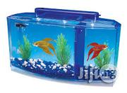 Portable Radiant Aquariums | Fish for sale in Abuja (FCT) State, Garki 1
