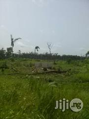 Lands at Imoke Ibeju Back of Ajah Community Free From Govt Accusation.   Land & Plots For Sale for sale in Lagos State, Ibeju