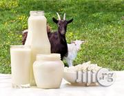 Fresh Goat Milk For Sale.. Pausterized & Non-pausterized | Meals & Drinks for sale in Abuja (FCT) State, Kubwa