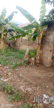 Lovely Land Getting to 200sqms in an Open Environment at Magboro With Accessible Road Network | Land & Plots For Sale for sale in Ogun State, Obafemi-Owode