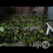 Fresh Plantain | Meals & Drinks for sale in Lagos State, Ikeja