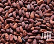Cocoa Beans - 1 Tonne | Feeds, Supplements & Seeds for sale in Lagos State, Ojodu