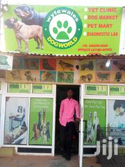Wytewales Dogworld Veterinary Services | Pet Services for sale in Lagos State, Ikorodu