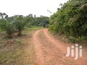 Farm Of 300 Acres Of Lands With Modern Facilities At Ogun State For Sale. | Commercial Property For Sale for sale in Lagos State, Ikeja