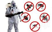 Fumigation General Cleaning | Cleaning Services for sale in Lagos State, Surulere