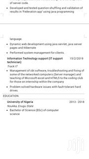 Web Developers | Computing & IT CVs for sale in Lagos State, Mushin