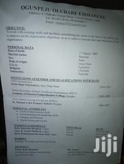 Driver at Box Residence   Driver CVs for sale in Lagos State, Lekki Phase 1