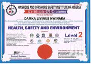 Vitual Health And Safety Services Job Opportunity | Security CVs for sale in Rivers State, Obio-Akpor