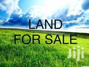 1000sqm in Kaura With C of O   Land & Plots For Sale for sale in Abuja (FCT) State, Kaura