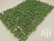 Affordable Quality Wall Plants For Sale | Garden for sale in Delta State, Warri