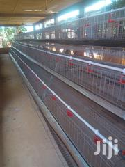 Battery Cage | Farm Machinery & Equipment for sale in Oyo State, Akinyele