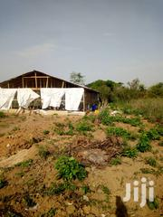 Poultry Farm at Ilupeju Village After Omi Adio Off Iba/Abeokuta Road | Commercial Property For Sale for sale in Oyo State, Ido