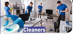 Gap-link Cleaning Services