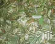 Soursop Dried Leaves | Feeds, Supplements & Seeds for sale in Ogun State, Abeokuta South