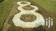 Green Initiative | Landscaping & Gardening Services for sale in Abuja (FCT) State, Katampe