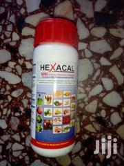 HEXACAL Fungicide | Feeds, Supplements & Seeds for sale in Delta State, Warri South-West