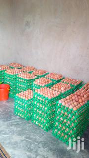 Fresh And Healthy Table Eggs Directly From Farm | Meals & Drinks for sale in Ogun State, Obafemi-Owode