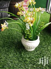 Potted Flowers For Interiors Decoration At Sales | Landscaping & Gardening Services for sale in Abia State, Umuahia South