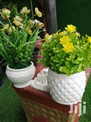 Mini Potted Flowers For Sale | Landscaping & Gardening Services for sale in Akwa Ibom State, Uyo