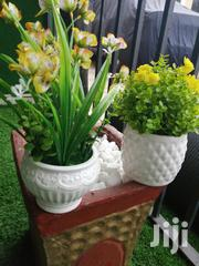 Mini Potted Flowers For Sale | Landscaping & Gardening Services for sale in Anambra State, Awka