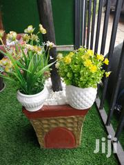 Decorate Your Home And Office With Portable Potted Flower | Garden for sale in Anambra State, Nnewi