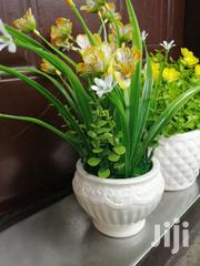 Quality Mini Potted Beautiful Flowers | Landscaping & Gardening Services for sale in Lagos State, Ikeja