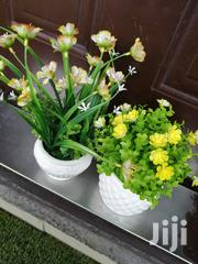 Beautiful Mini Potted Flowers For Sale | Landscaping & Gardening Services for sale in Ondo State, Akure