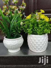 Beautiful Mini Potted Flowers For Sale | Landscaping & Gardening Services for sale in Osun State, Ife