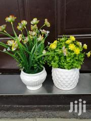 Beautiful Small Potted Flowers For Sale | Landscaping & Gardening Services for sale in Plateau State, Bassa-Plateau