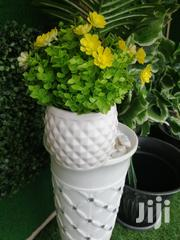 Get Affordable Potted Mini Flowers At Affordable Price | Landscaping & Gardening Services for sale in Rivers State, Ogba/Egbema/Ndoni