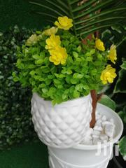 Get Affordable Potted Mini Flowers | Landscaping & Gardening Services for sale in Rivers State, Port-Harcourt