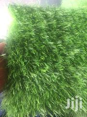 Green Grass | Landscaping & Gardening Services for sale in Lagos State