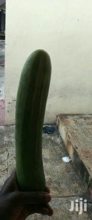 Hybrid Farm Fresh Cucumbers (Wholesale)   Meals & Drinks for sale in Oyo State, Ibadan North West