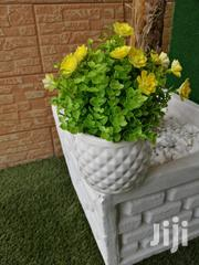 Beautify That Home With Out Potted Small Flowers | Landscaping & Gardening Services for sale in Akwa Ibom State, Ikot Ekpene