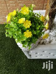 Make Your Home Beautiful With Our Pot Flowers Nationwide | Garden for sale in Anambra State, Awka