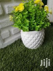 Quality Beautiful Pot Flowers At Affordable Prices | Garden for sale in Delta State, Aniocha South