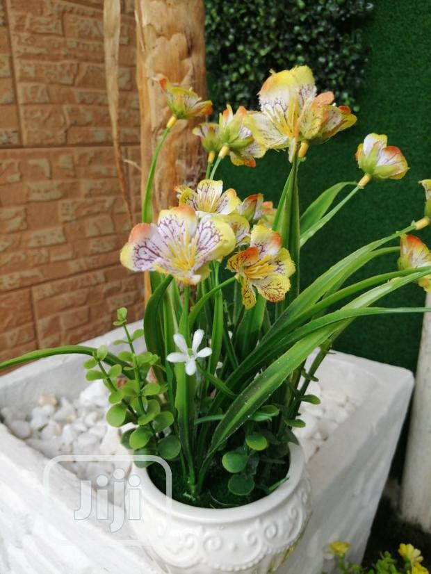 Potted Flowers For Decoration At Sales