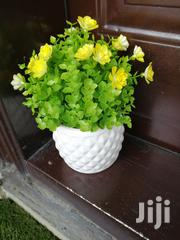 Beautified Flowers For Decorating At Sales Nationwide   Landscaping & Gardening Services for sale in Benue State, Makurdi
