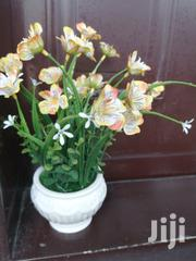 Beautified Flowers For Decorating At Sales For Low Cost | Landscaping & Gardening Services for sale in Ebonyi State, Abakaliki