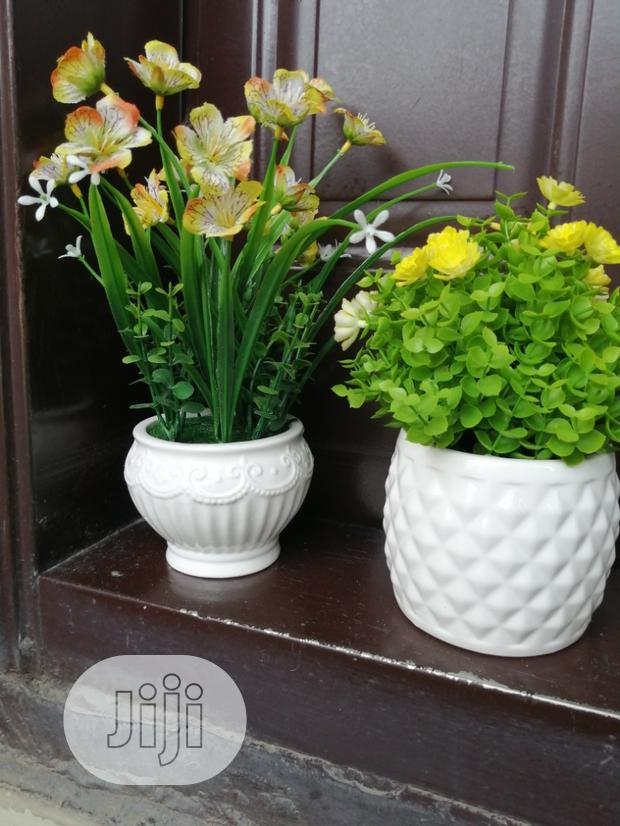 Classic Beautiful Pot Flower For Sale