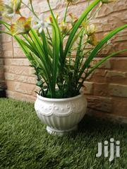 Beautiful Potted Mini Flowers For Sale Nationwide | Landscaping & Gardening Services for sale in Lagos State, Ipaja