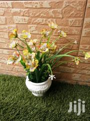Give Your Office A Good Look With Our Pots Flowers,Order Yours   Garden for sale in Nasarawa State, Lafia