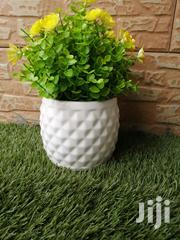 Affordable Beautified Pot Flowers For Sale | Garden for sale in Ondo State, Ondo