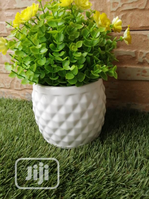 Beautiful Mini Cup Flowers For Decoration At Sales
